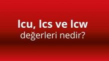 Icu, Ics ve Icwdeğerleri  nedir?