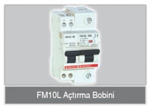 FM10L_ab_buton