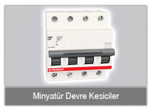 minyatur_dev_kes_buton